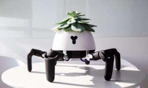 Widzieliście już wszystko? A robo-pająka z rośliną na głowie?