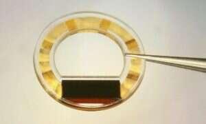 Ten implant może monitorować ciśnienie Twoim w oku