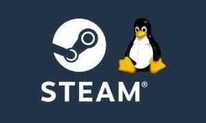 Valve pracuje nad narzędziem, które umożliwi granie na Linuxie w gry na Windowsa