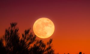 Ziemia ciągle przyciąga mini-księżyce