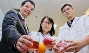 Naturalny środek konserwujący zachowa dłużej świeżość produktów