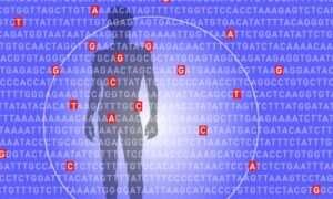 Nowy algorytm pomoże ocenić ryzyko zachorowania na choroby
