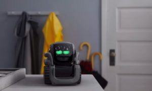 Vector to robot-asystent, na jakiego czekaliśmy
