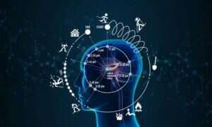 Naukowcy odkryli zegar w mózgu, który wpływa na postrzeganie czasu
