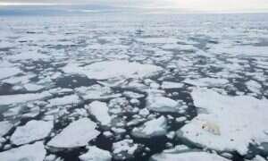 Arktyczny lód topi się wciąż w szybkim tempie