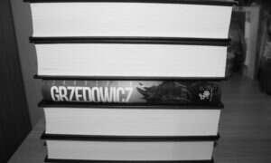 """Jarosław Grzędowicz """"Azyl"""" – recenzja książki."""