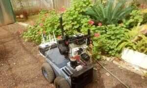 Robot inspirowany nietoperzami porusza się korzystając z ultradźwięków