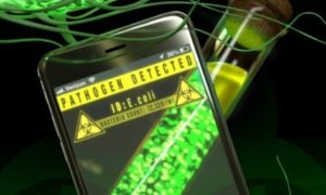 Jak zidentyfikować patogeny przez smartfona?