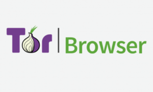 Przeglądarka Tor pojawiła się Google Play