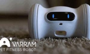 Robot Varram Pet Fitness zabawi Waszego pupila