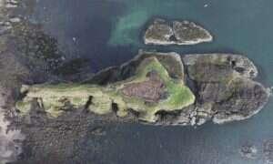 Piktowie ze Szkocji opracowali język pisany 1,700 lat temu