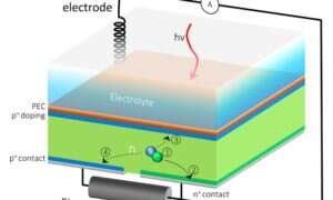 Ta hybrydowa komórka zamienia wodę w elektryczność