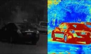 W jaki sposób można usprawnić autonomiczne samochody dzięki skorupiakom?