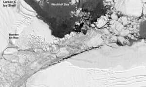 """NASA wie, gdzie """"narodziła się"""" słynna prostokątna góra lodowa"""