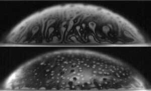 Bąbelki mogą być oznaką działania bakterii
