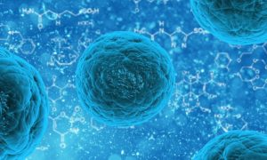 Ten wirus wyłapuje komórki nowotworowe