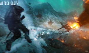 Battlefield 5 bez podstawowej funkcji