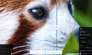 Squoosh to nowy konwerter obrazów od Google