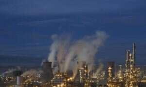Naukowcy zamierzają sprawdzić stężenie zanieczyszczeń na przestrzeni lat