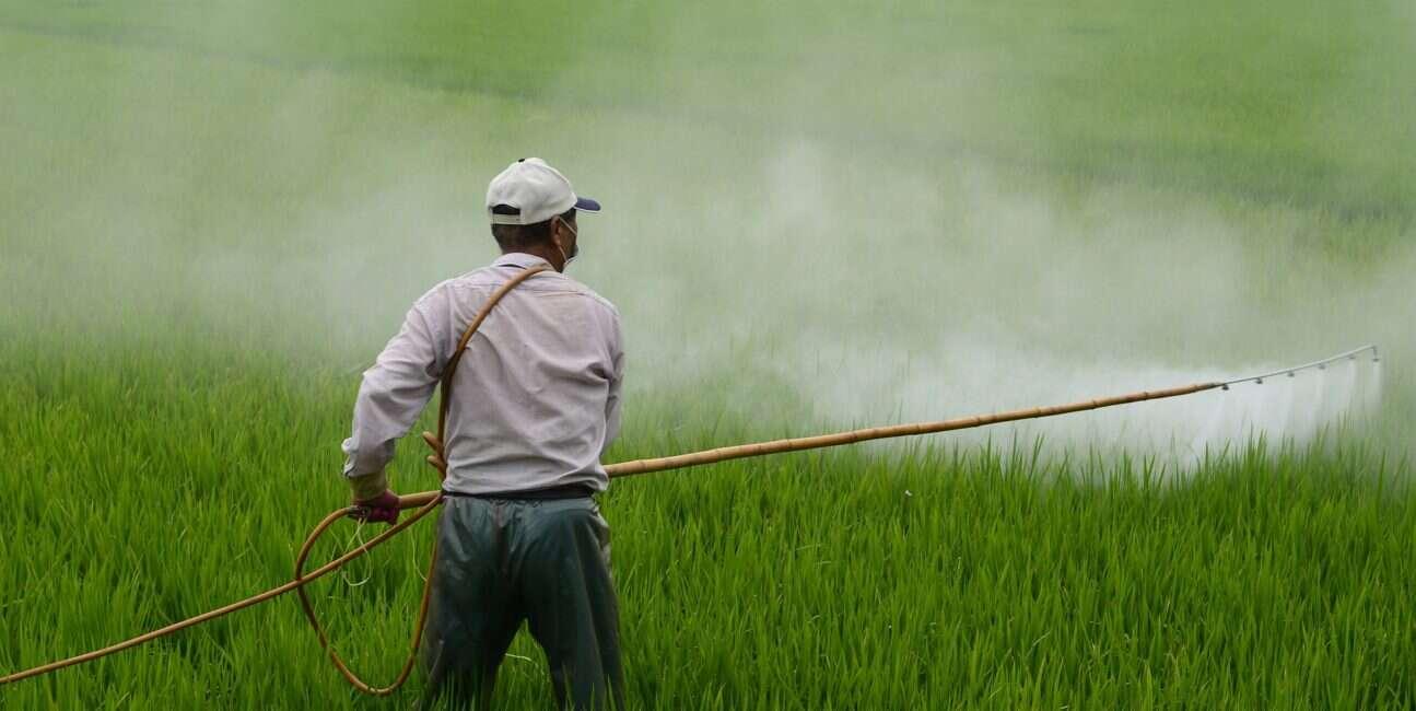 herbicyd
