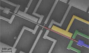 Powstała pierwsza mikroelektromechaniczna sieć neuronowa