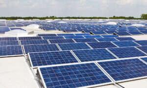 Te panele słoneczne nagrzewają się w dzień i chłodzą w nocy