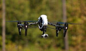 Badania nad pszczołami pozwolą usprawnić drony