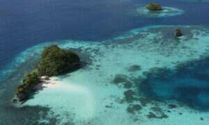 Palau zakazuje filtrów przeciwsłonecznych