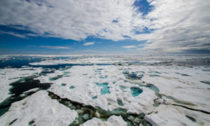 Prawie cały najstarszy lód Arktyki zdążył już zniknąć