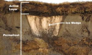 Topnienie wiecznej zmarzliny stanowi ogromne zagrożenie dla Arktyki