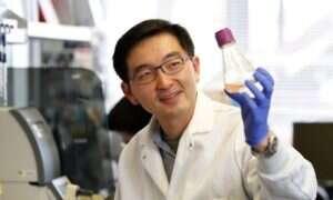 Naukowcy znaleźli białko odpowiedzialne za szybki wzrost organizmów