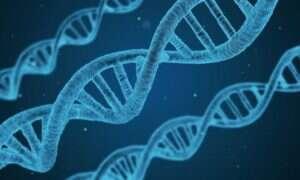 DNA we krwi różni się wraz z wiekiem
