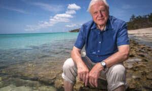 """David Attenborough przewiduje """"upadek cywilizacji"""" podczas szczytu klimatycznego ONZ"""