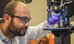 Elektrody z nadrukiem 3D pomogą w monitorowaniu glukozy