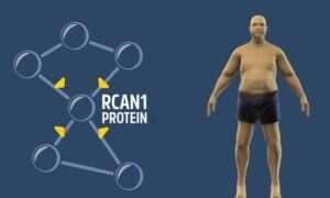 Edycja genów sposobem na rozwiązanie problemu otyłości?