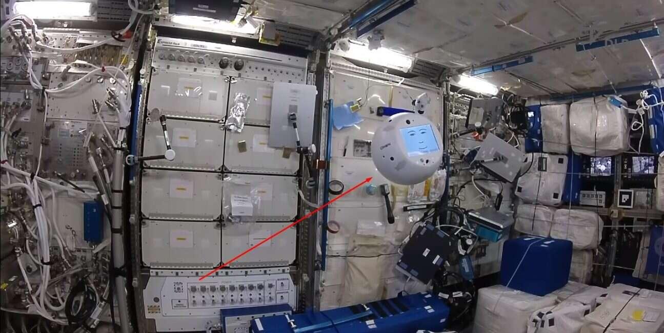 Jak napędzany SI robot Cimon radzi sobie na Międzynarodowej Stacji Kosmicznej?