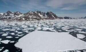 Lód Grenlandii topi się w najszybszym tempie od 350 lat