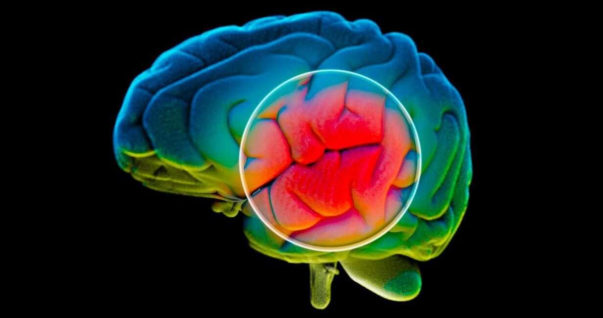 Alzheimer, leczenie Alzheimer, lek Alzheimer, eksperymentalny lek Alzheimer, antybiotyk Alzheimer,