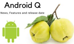Android Q może trafić na rynek już w maju