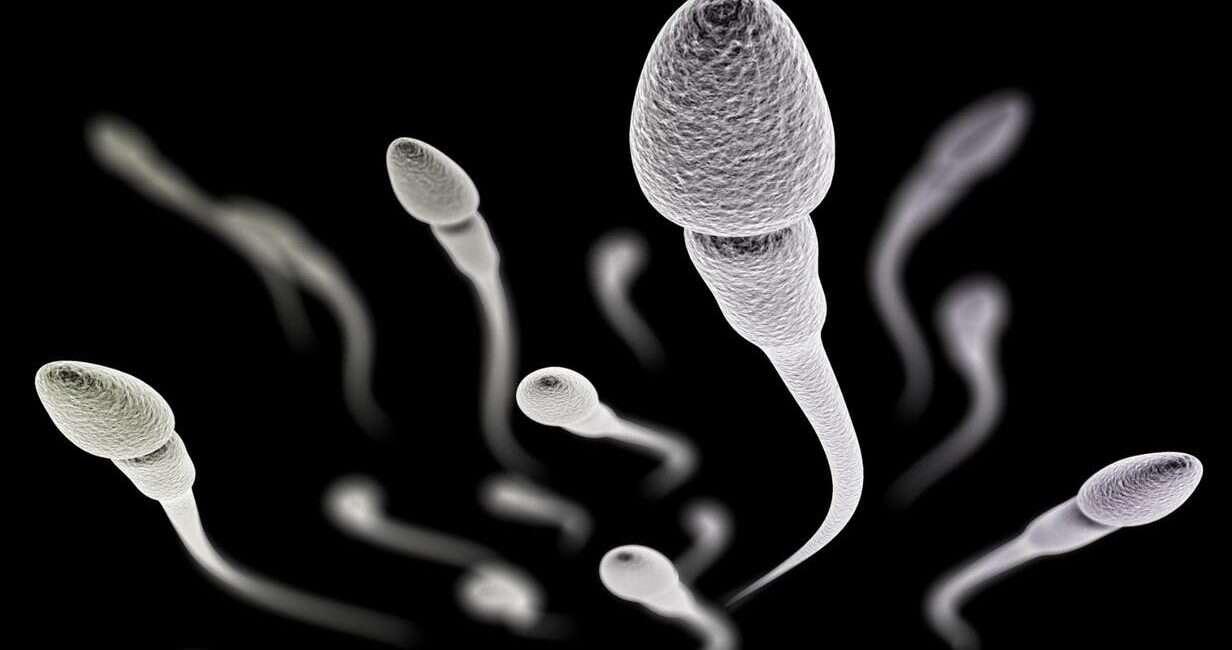 antykoncepcja, męska antykoncepcja, nowa antykoncepcja