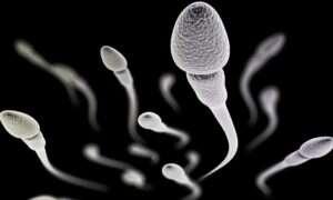 Skuteczny męski środek antykoncepcyjny