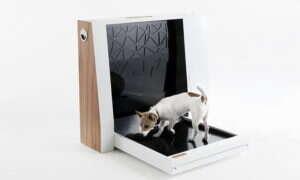 Inubox to pierwsza zautomatyzowana toaleta dla psów