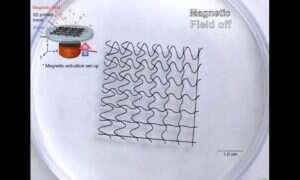 Ta robotyczna siatka reaguje na zmiany pola magnetycznego