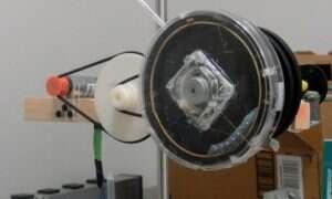 Naukowcy wykorzystali diody LED do obserwowania gąsienic