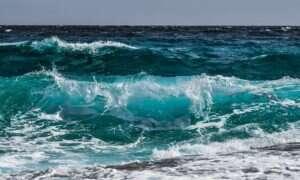 Temperatury oceanów są największe w historii