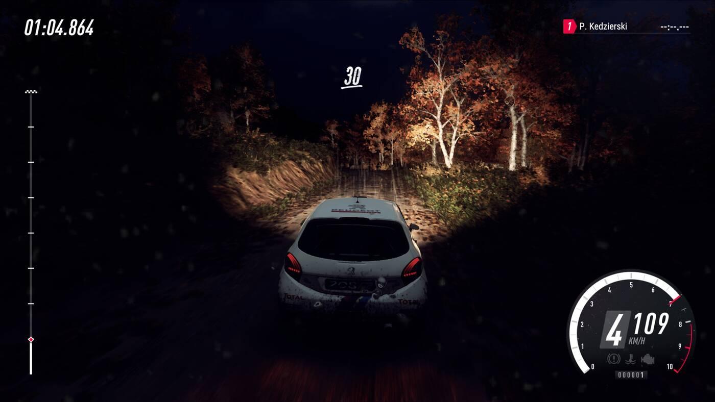 DiRT Rally 2.0 rajd noc