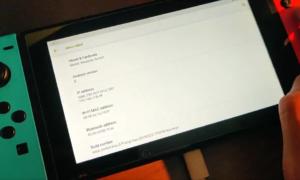 Android na Nintendo Switch – jak sprawuje się system?