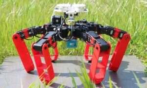 System nawigacji robota AntBot bazuje na tym używanym przez mrówki