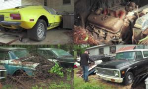 To gospodarstwo jest pełne zdezelowanych klasycznych samochodów