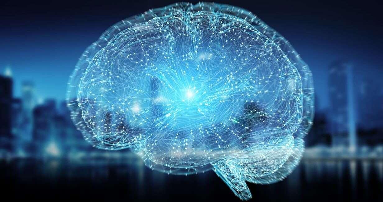 świadomość, mózg, badanie mózgu, wzorzec świadomości